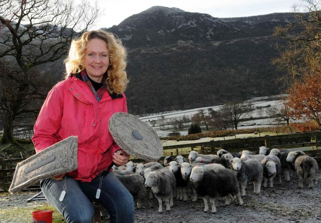 Wool: Sally Phillips, founder of Chimney Sheep, in Maryport