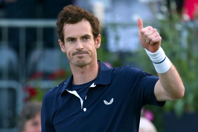 Andy Murray could be rested for Wednesday's clash with the Netherlands