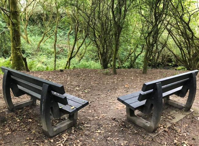 Benches at Harrington nature reserve before being vandalised in January