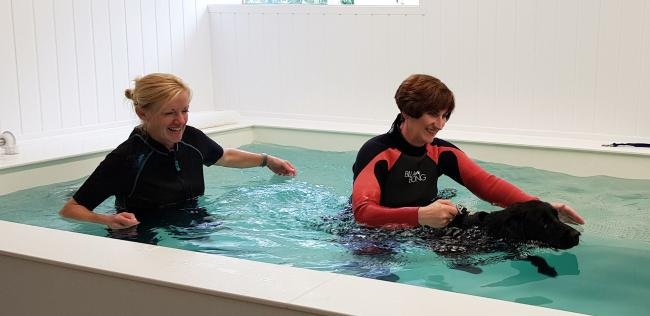 n Sharon Rogers, who owns Tutehill Kennels at Pica, has opened a canine hydrotherapy centre