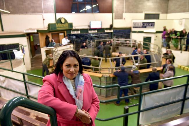 Home Secretary Priti Patel at Mitchells Auction Mart in Cockermouth during the pre General Election campaign trail