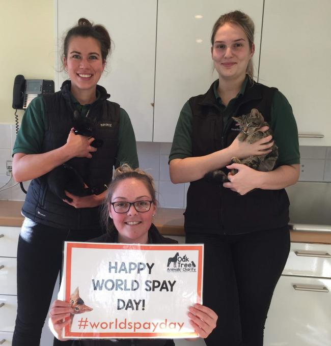 TEAM: Green Vets, Skelton, back Oak Tree Animals' Charity's campaign for World Neuter Day