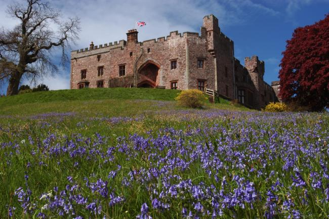VISITORS WELCOME: Muncaster Castle is among those thrilled to open its gardens to visitors again