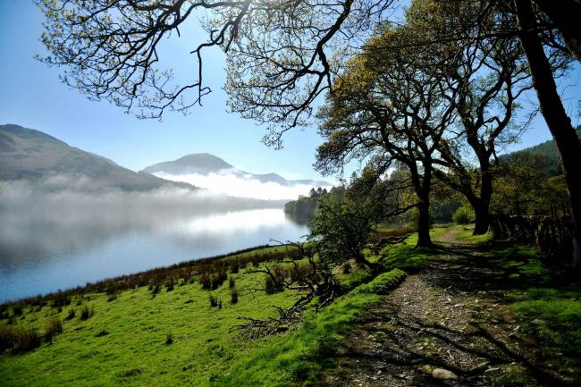 Westview Misty spring morning at Loweswater..Pic Tom Kay Sunday 6th May 2018  50090170T008.JPG.