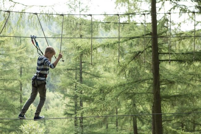 Go Ape: The Whinlatter centre is opening new roles as part of the Kickstart scheme