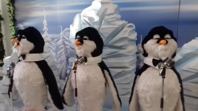 Singing penguins at Dunmail Park Workington Christmas 2018