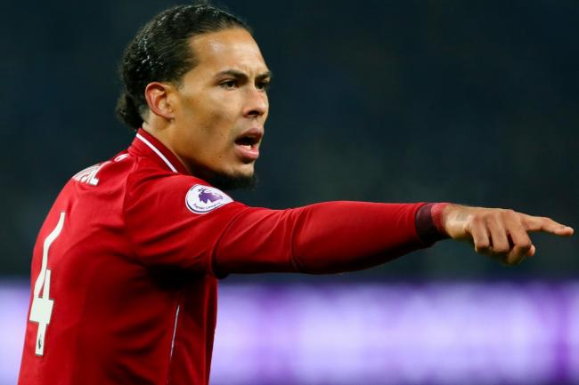 Virgil van Dijk, pictured, has impressed Chris Hughton